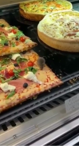 ratones comen pizza restaurante (3)