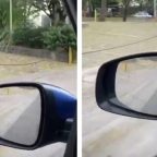 ¿Miedo al coronavirus? GPS pide a conductor regresar a casa para evitar infección (VIDEO)