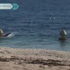 Hombres se hacen virales por disfrazarse de boyas para entrar al mar