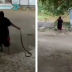 Abuelita de India impacta a redes por arrastrar a cobra (VIDEO)