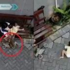 Mono en moto intenta secuestrar a una niña en Indonesia