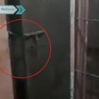 Investigan a policías por difundir video de supuestos fantasmas en comisaría