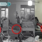 Mujer asegura que captó el fantasma de su gato que murió un año atrás (VIDEO)