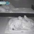 Madre descubre que su hijo se escapa en las noches para dormir con el perro (VIDEO)