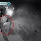 Captan a taxista llegando a casa ajena ¡para robarse las macetas! (VIDEO)