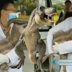 Conoce la verdad sobre el caso del dinosaurio 'clonado' en China (VIDEO)