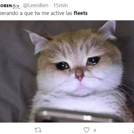fleets de Twitter 14