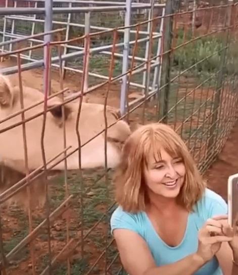 camello le come el cabello a mujer 1