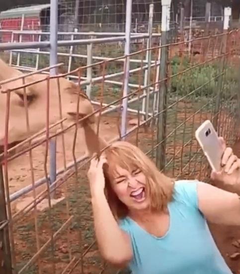 camello le come el cabello a mujer 2