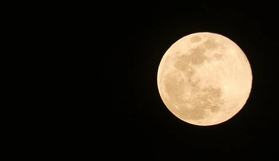 luna rosa 2