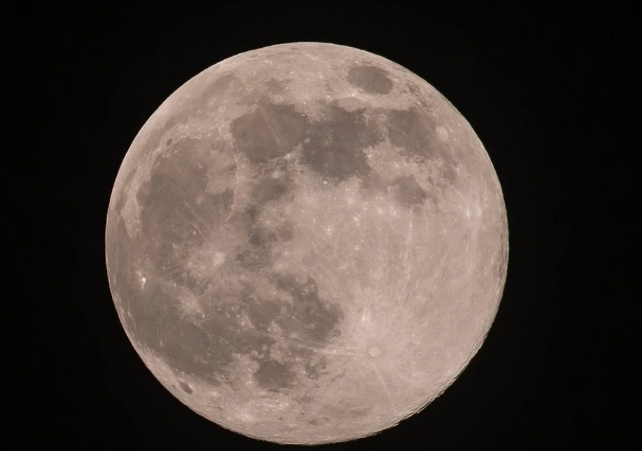 luna rosa viral