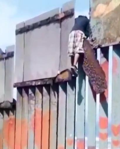 muro de eu