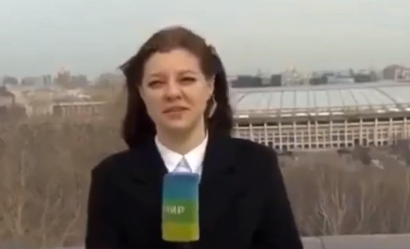 perrito roba microfono