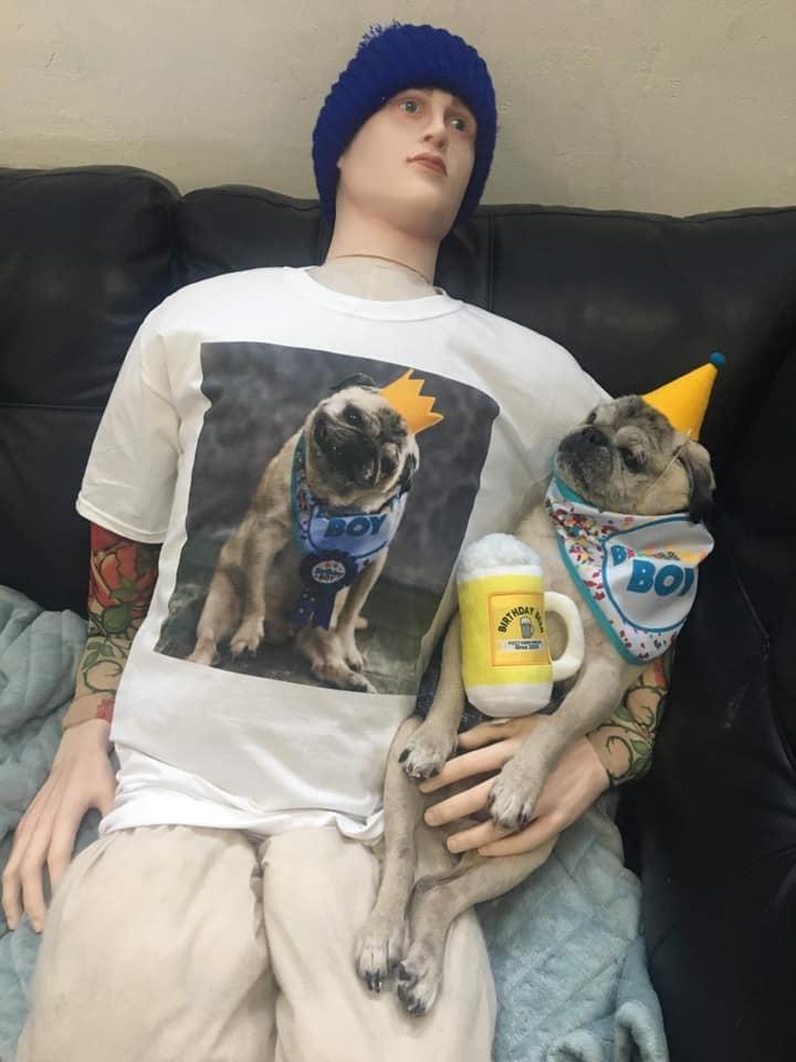 perro 4