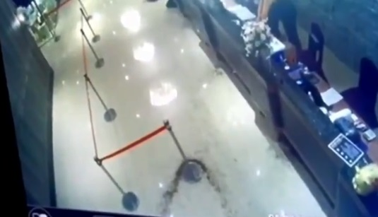 cucarachas en china 7