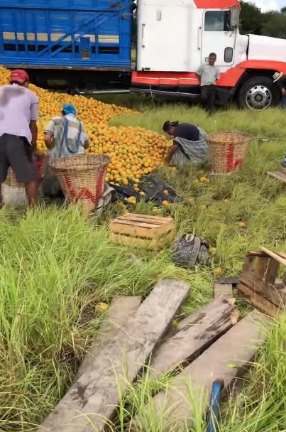 niño compra naranjas 2