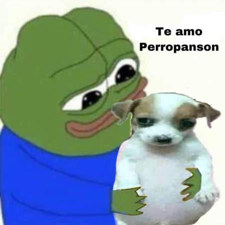 perro panson 7