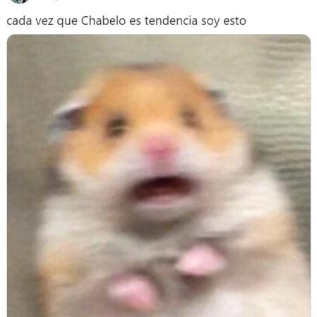 chabelo 2