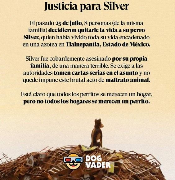 justicia para silver 2